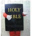 biblecostume