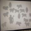 DSCF3108: Shepherd has 100 sheep