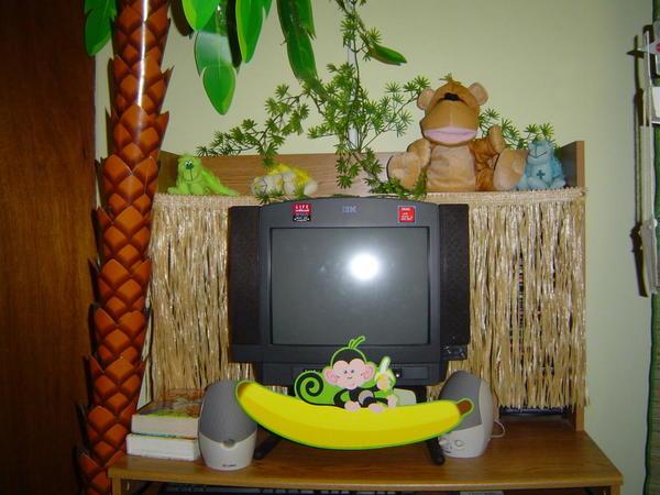 Computer 2008 Bongo 5