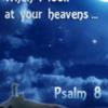 Psalm8-SetLogo