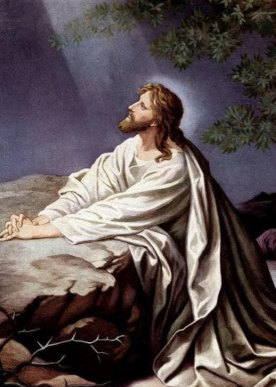 Wt jesus in gethsemane bible background and lesson - Jesus in the garden of gethsemane ...
