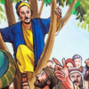 Zaccheus in a tree