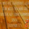 Proverbs8.5